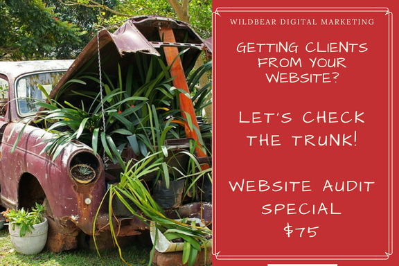 Website Audit Special